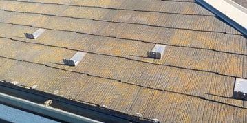 屋根の色褪せ、藻、コケ